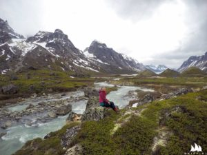 Tu po raz pierwszy zobaczyliśmy, że Grenlandia może być GREEN