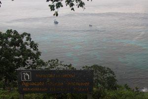 Zatoka Chatcham widziana z góry