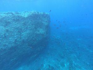 Woda przy Wyspie jest krystalicznie czysta