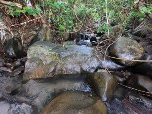Część kamieni jest położonych u ujścia małej rzeczki